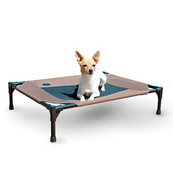 K H Pet Cot 33 X 25 5 Elevated Dog Bed Raised Dog Beds Pets