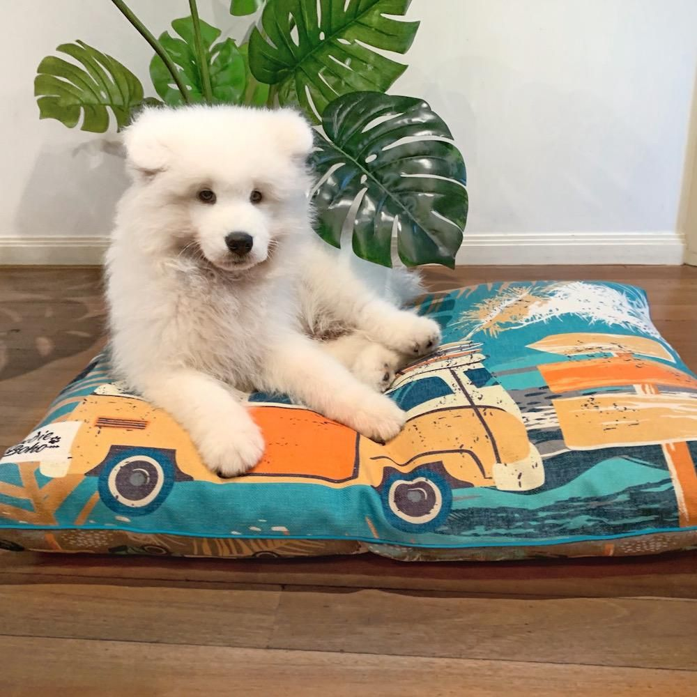 Additional Bed Cover Byron Surf in 2020 Stylish dog