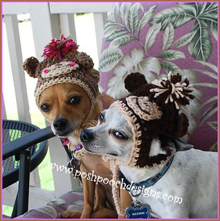 b420976f5cc Monkey Dog Beanie Hat pattern by Sara Sach