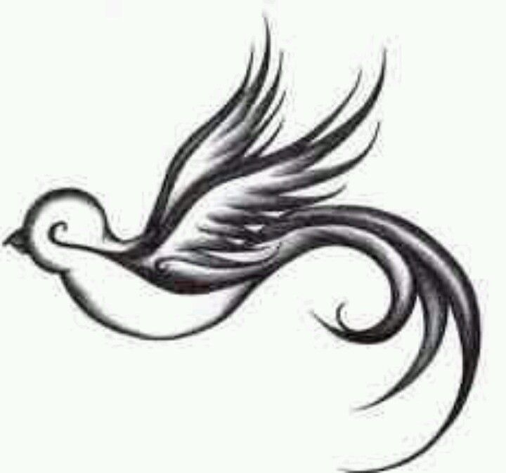 Swallow Tattoo I Like Pinterest Swallow Tattoo Swallows