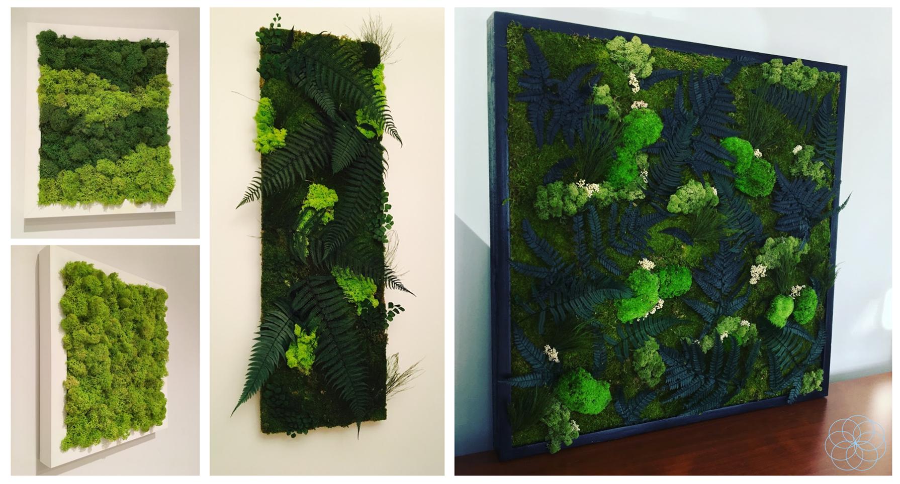 Pin by concept design plus on plantes préservées pinterest