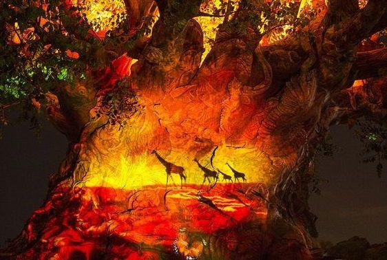 Tree of Life Night-time Awakenings Animal Kingdom