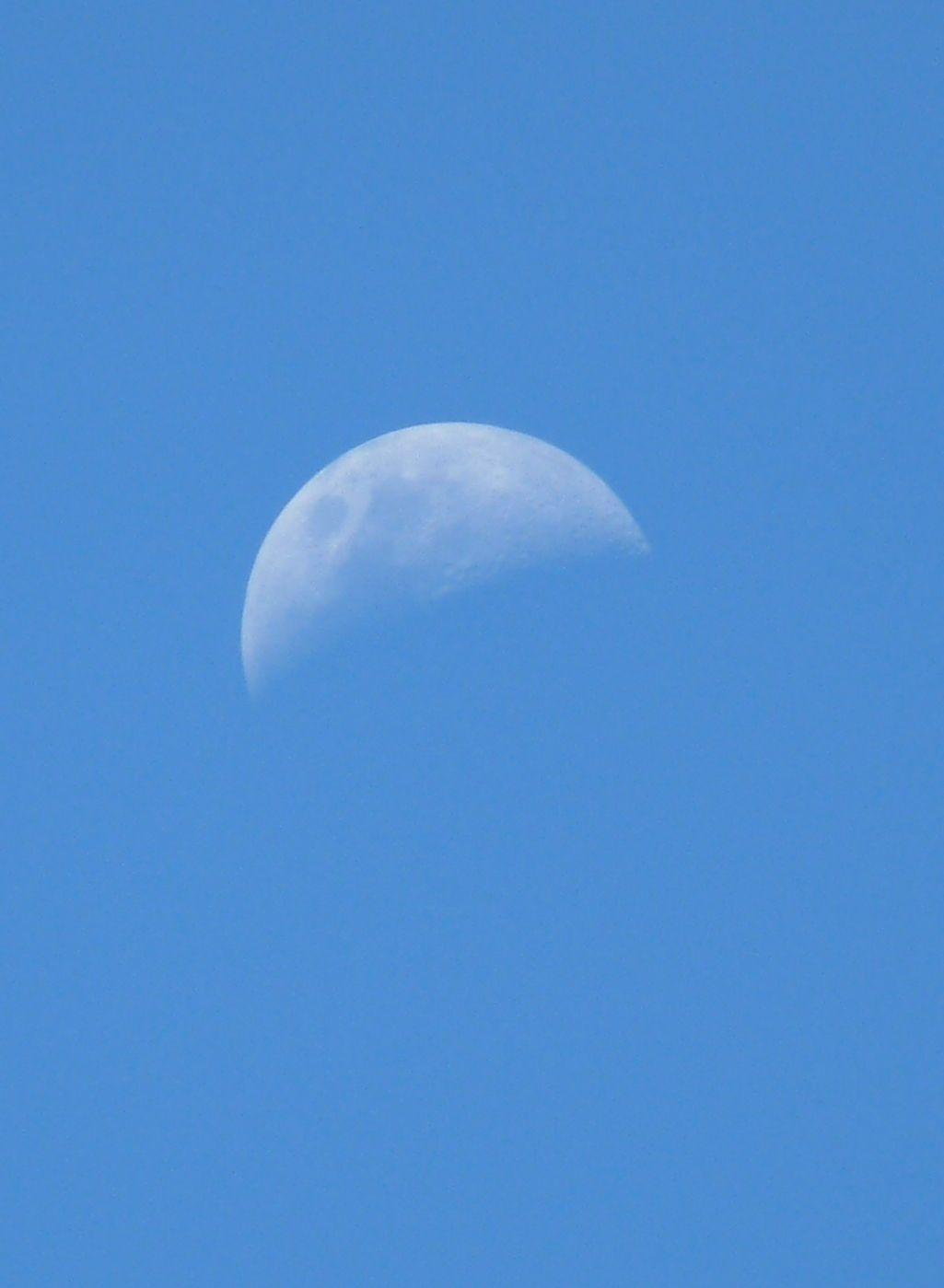 salió temprano a pasear por el cielo a ver si encontraba el sol #Luna