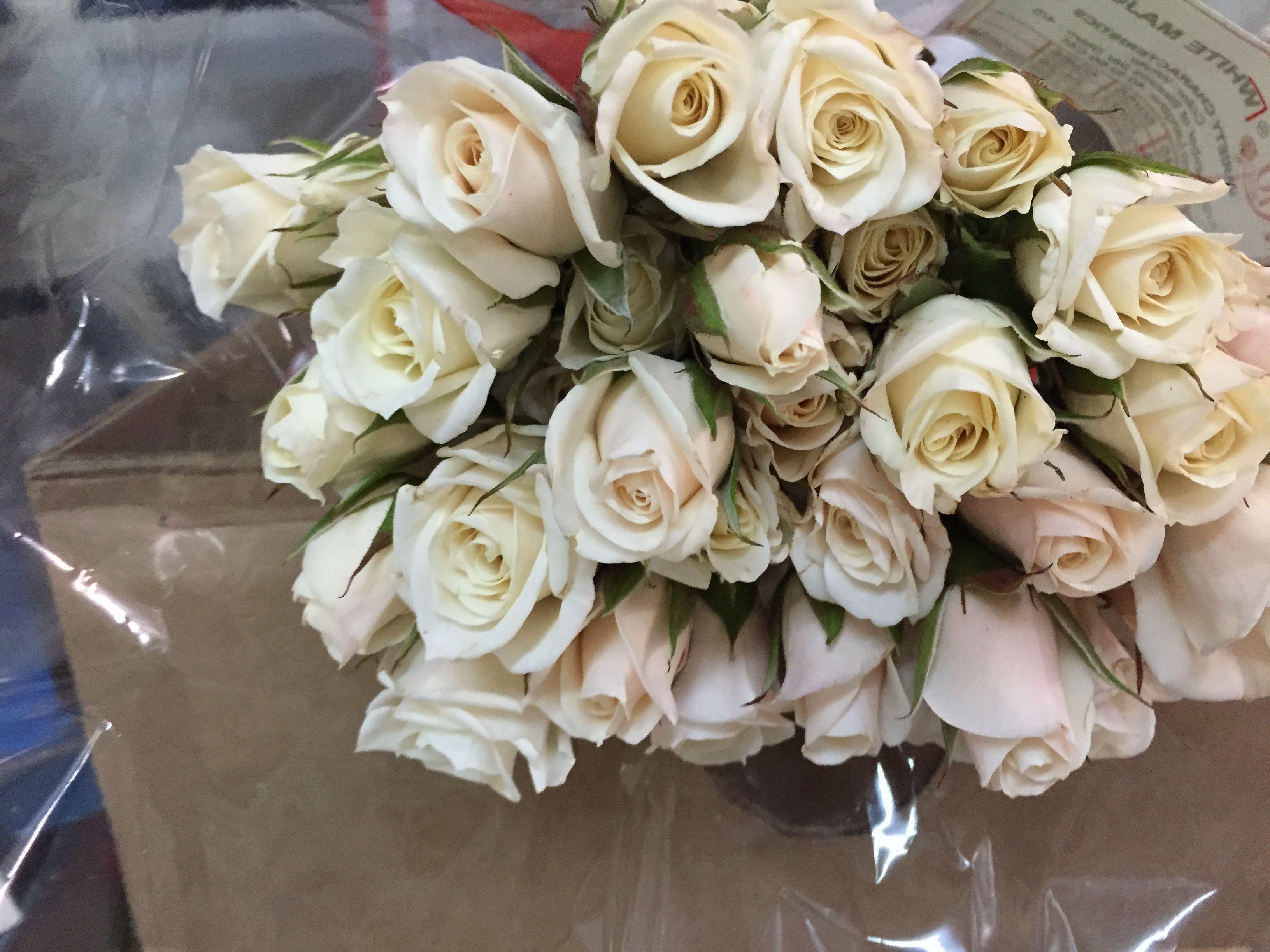 White Majolica Spray Roses Wedding flowers, Spray roses