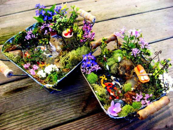 1000 images about Desktop Gardening ideas on Pinterest Gardens