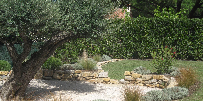 Jardin olivier jardin paysage pinterest for Jardin olivier