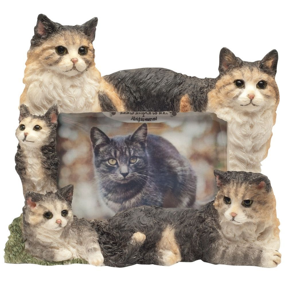 Maine Coon Cat Family Large Picture Frame