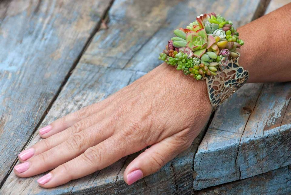 All succlents by design for serernity. Wrist Corsage