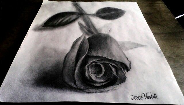 Rosa Negra Dibujos Pinterest Art Drawings 3d Drawings Y Drawings