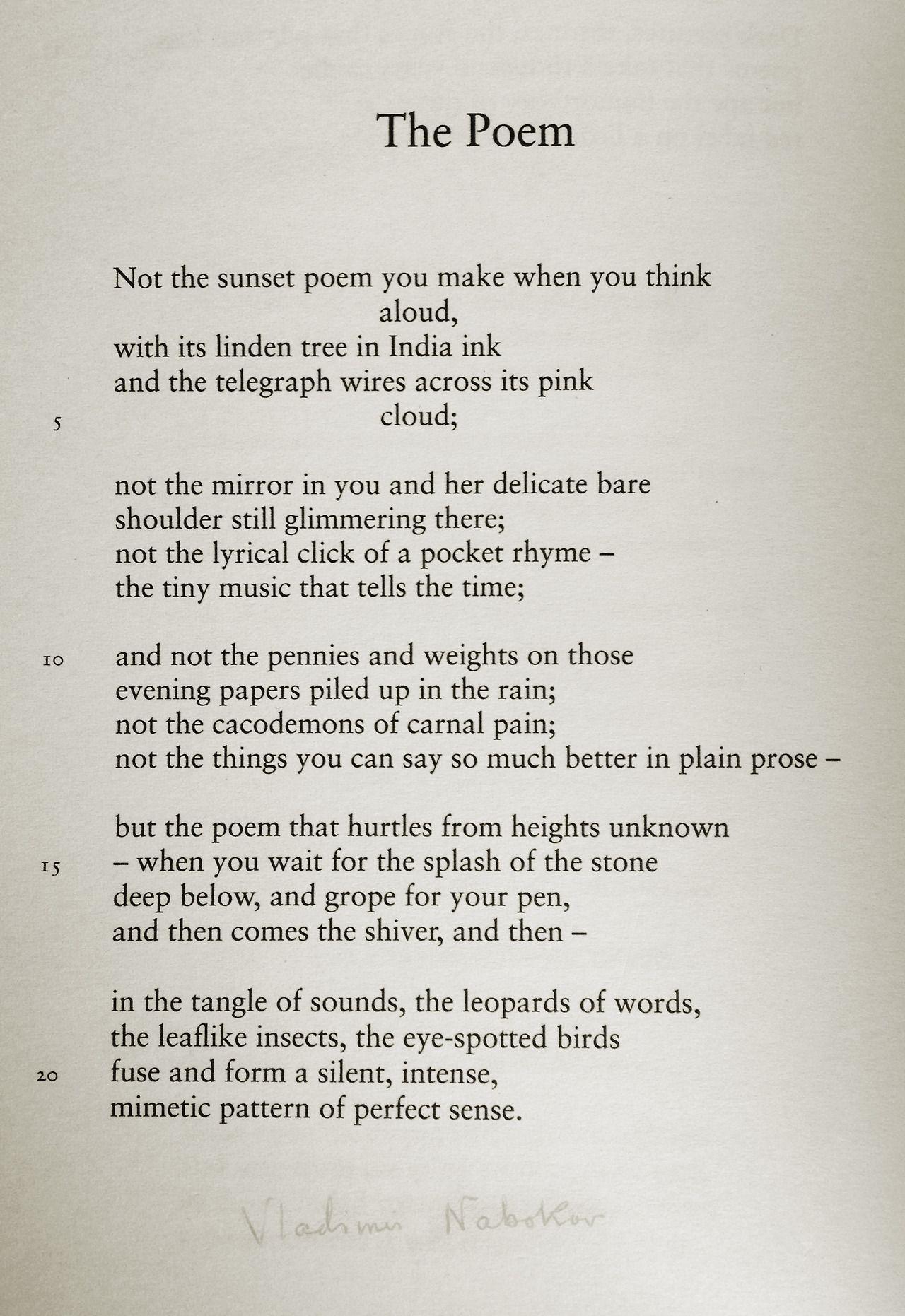 The kindest soul Nabokov 40