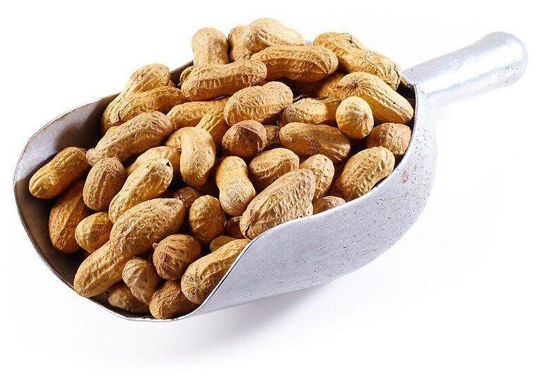 Roasted Peanuts Salted In Shell Peanuts Nuts Com Filling Food Raw Peanuts Magnesium Foods