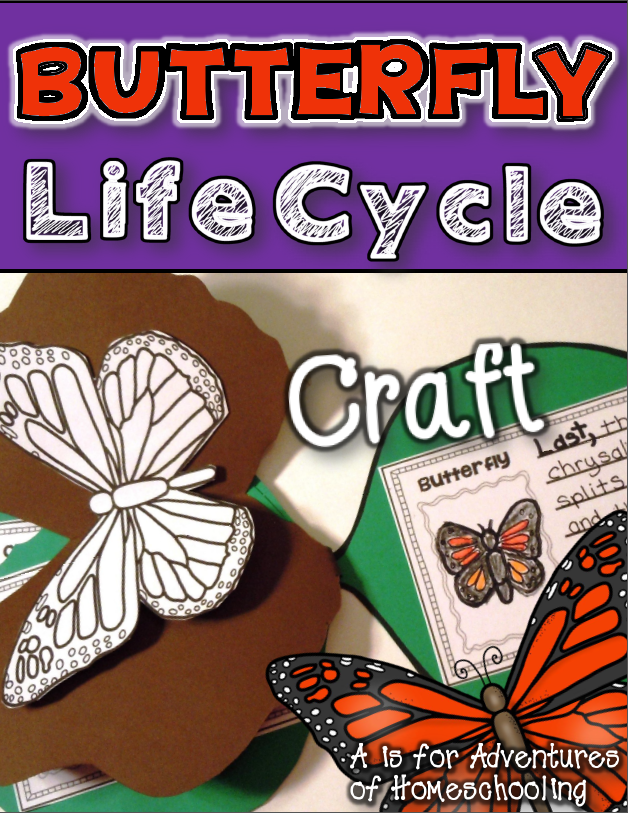Butterfly Crafts & Activities for Kids Butterfly life