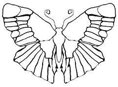 Butterfly Templates Ideas For Painting Rocks And Stones Drawing Template