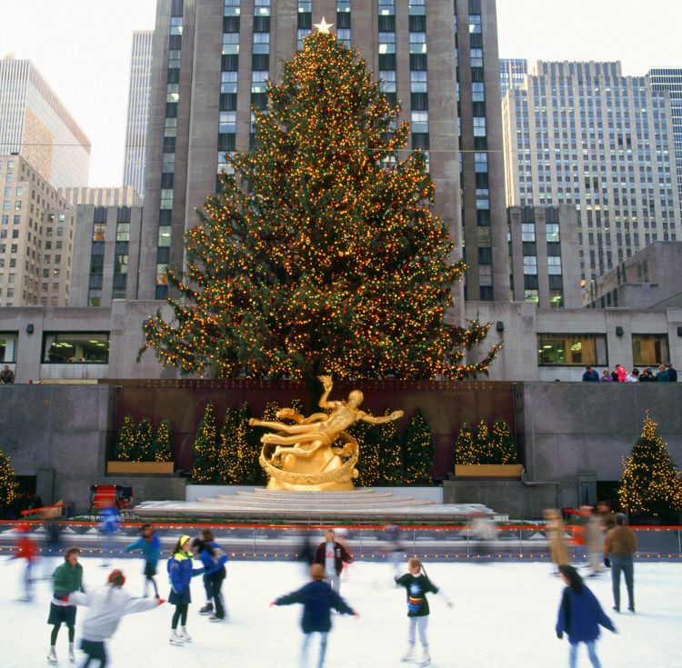 Let there be fairy lights: the Rockefeller tree will be lit up from 3rd December 2014. Image by Brian Lawrence / Photographer