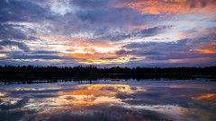 Lippajärvi