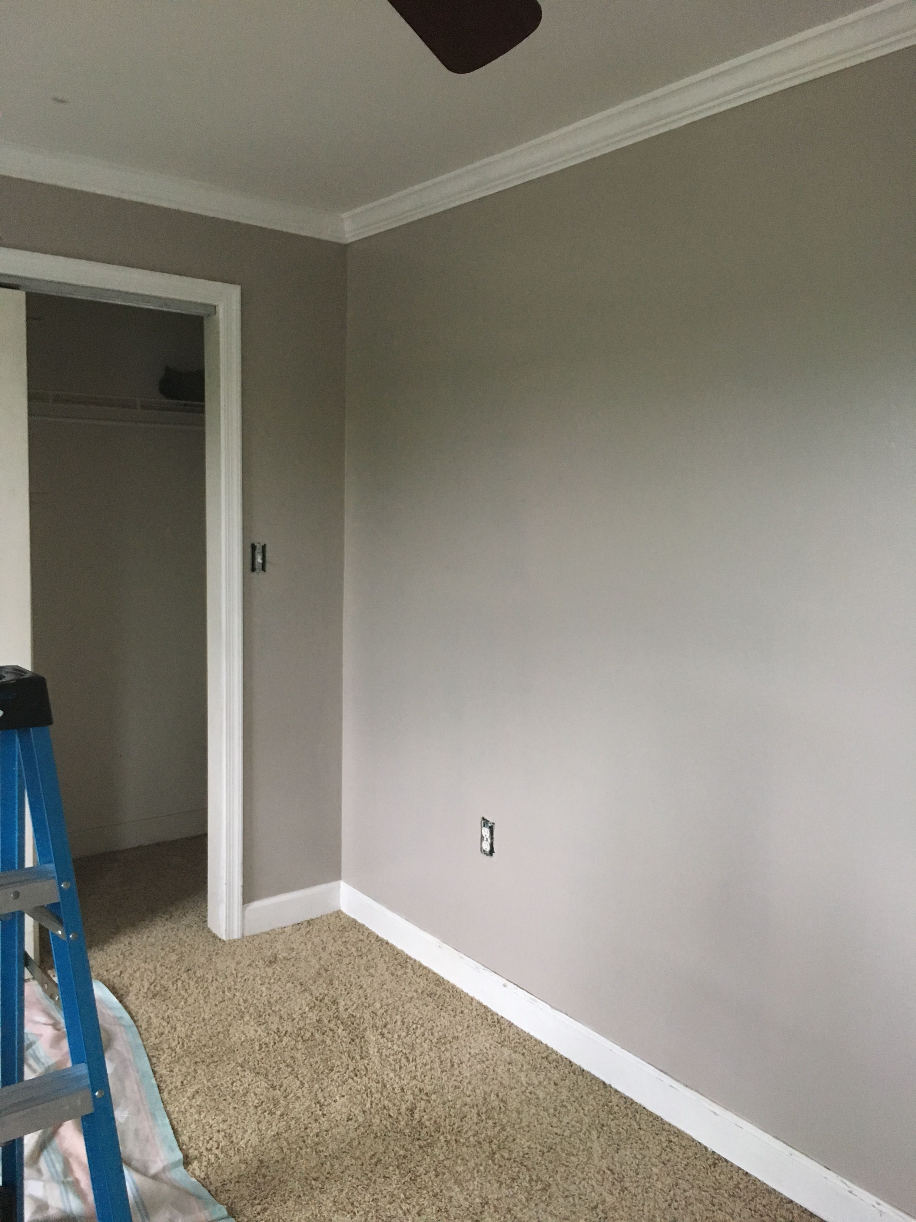 Basket beige sherwin williams - Sherwin Williams Adley Grey I Love This Color For Greige Paint