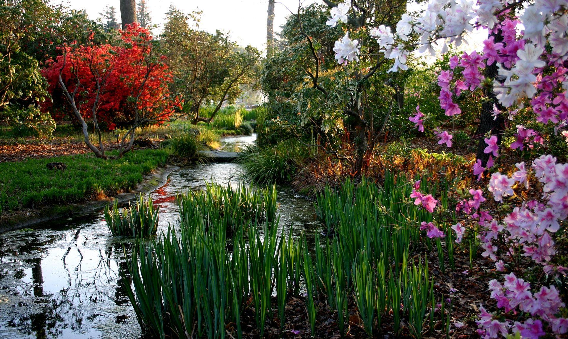 norfolk botanical garden. norfolk, va. 9am-5pm. admission - $11