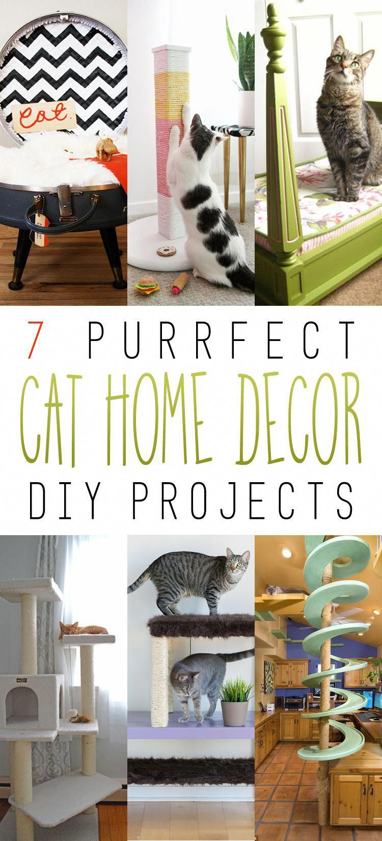 purrfect home decor cat diy projects the cottage market cat