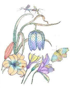 Een detail uit een tekening met de titel Bloemstuk, één van de kleurplaten uit Kleurboek No. 3. Ingekleurd door dhr. K.