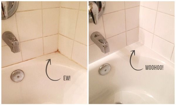 shower cleaner grout cleaning diy