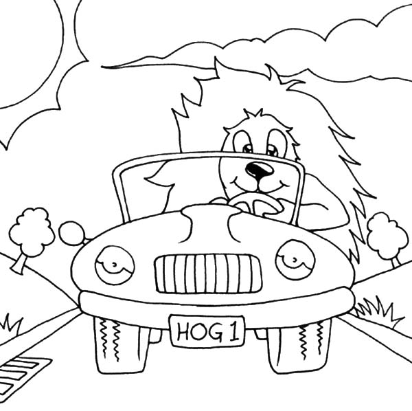 Hedgehog Car Driving Coloring Pages Best Place To Color Coloring Pages Coloring Pictures Color