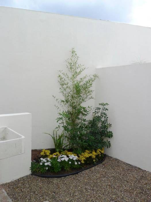 afuera patios pequeos jardines