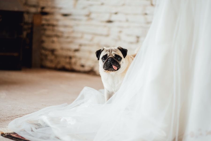 Sustainable Wedding Inspiration Styled Photo Shoot At The Mule