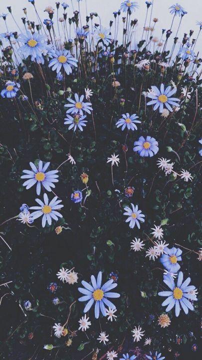 תמונות לסיפורים - 99. רקעים יפים 🎆🎇🌠