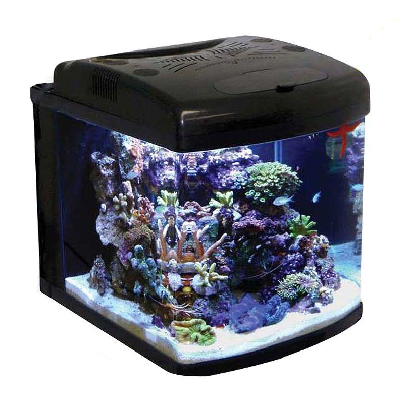 Smarthome Com Jbj Mt 601 Led 28 Gallon Nano Cube Led Aquarium Professional Nano Aquarium Aquarium Saltwater Aquarium