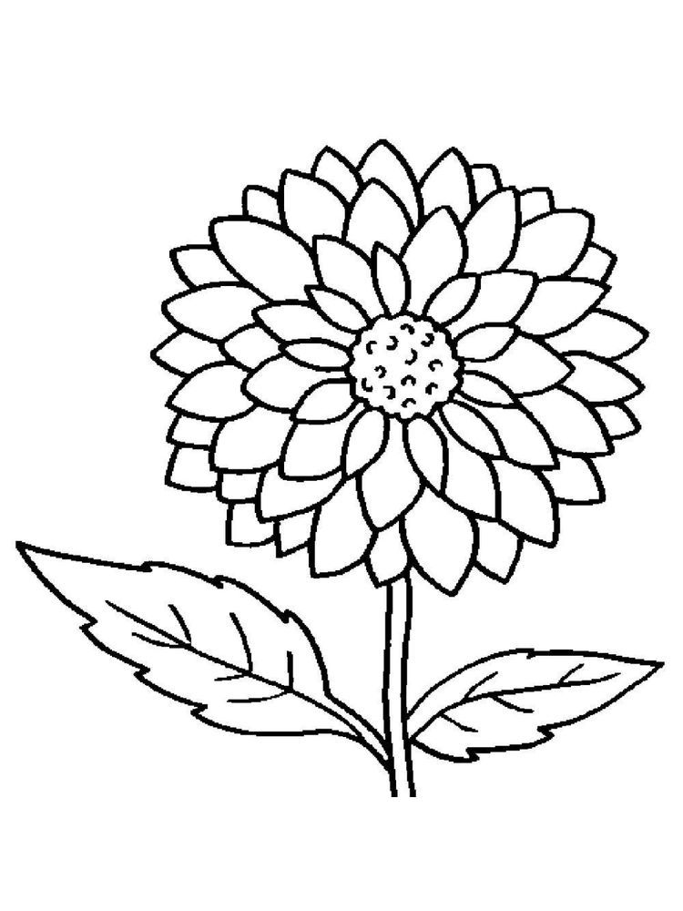 Flower Coloring Pages For Adults Pdf Sunflower coloring