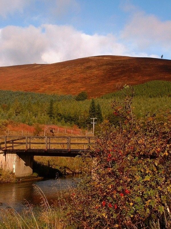 Road A939 Close To The Ski Resort Lecht In Northern Scotland All