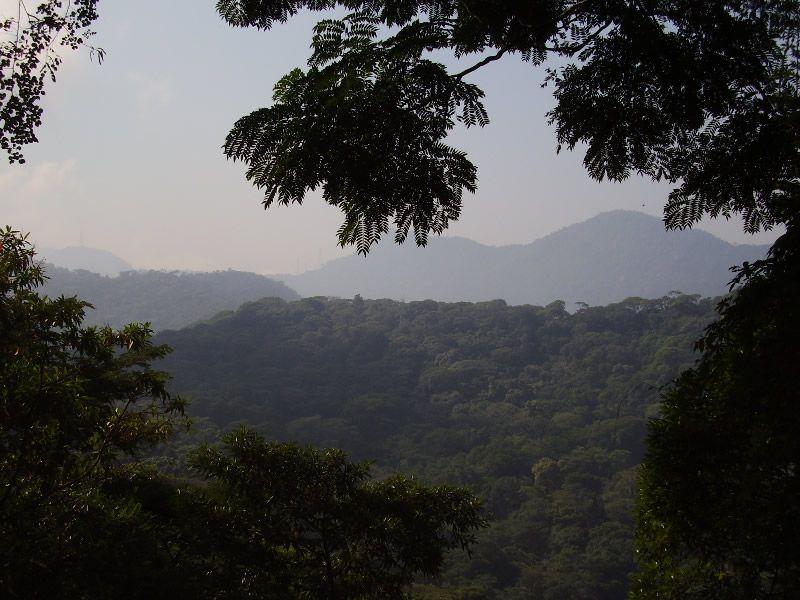 FlorestaTijuca