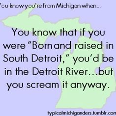 You know you're from Michigan when ...