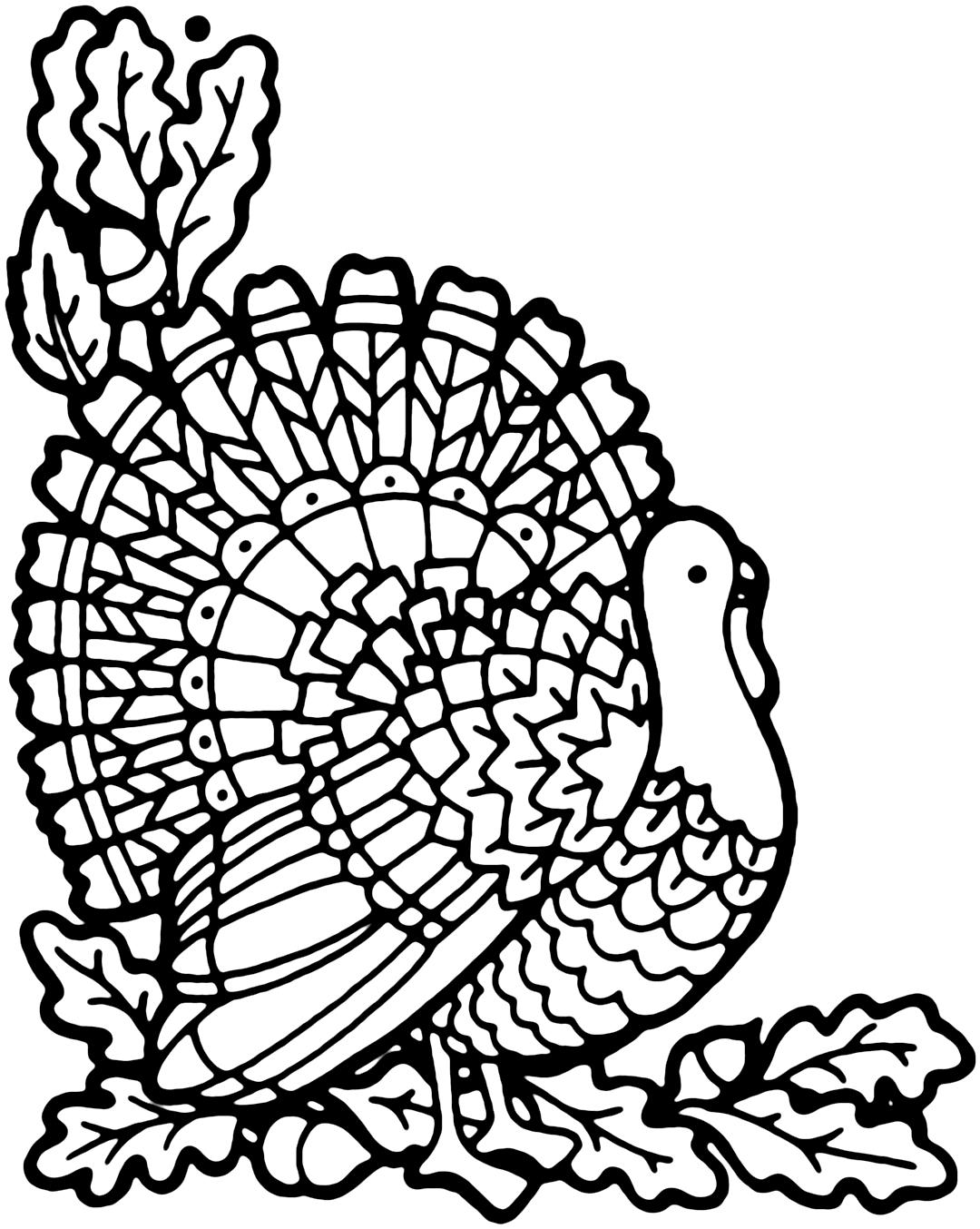 Turkey Coloring Pages Coloringcks