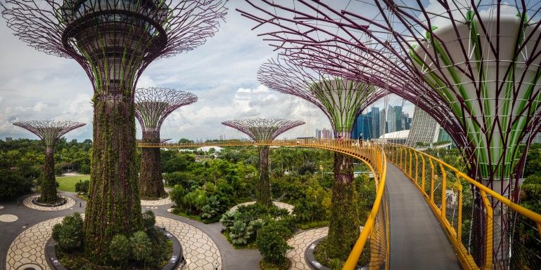 36440e3caaeb39df6c8bff9d2384a7f9 - Fun Facts About Gardens By The Bay