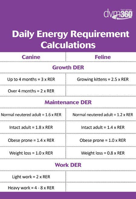 Daily Energy Requirement Calculation Chart Dvm360 Com Vet Medicine Veterinary Tech Vet Tech Student