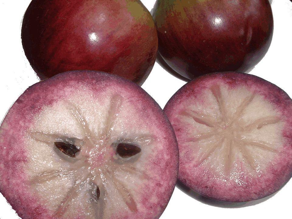 6 Health Benefits Of Jamaican Star Apple Jamaicansmusicz Com Star Apple Fruit Delicious Fruit