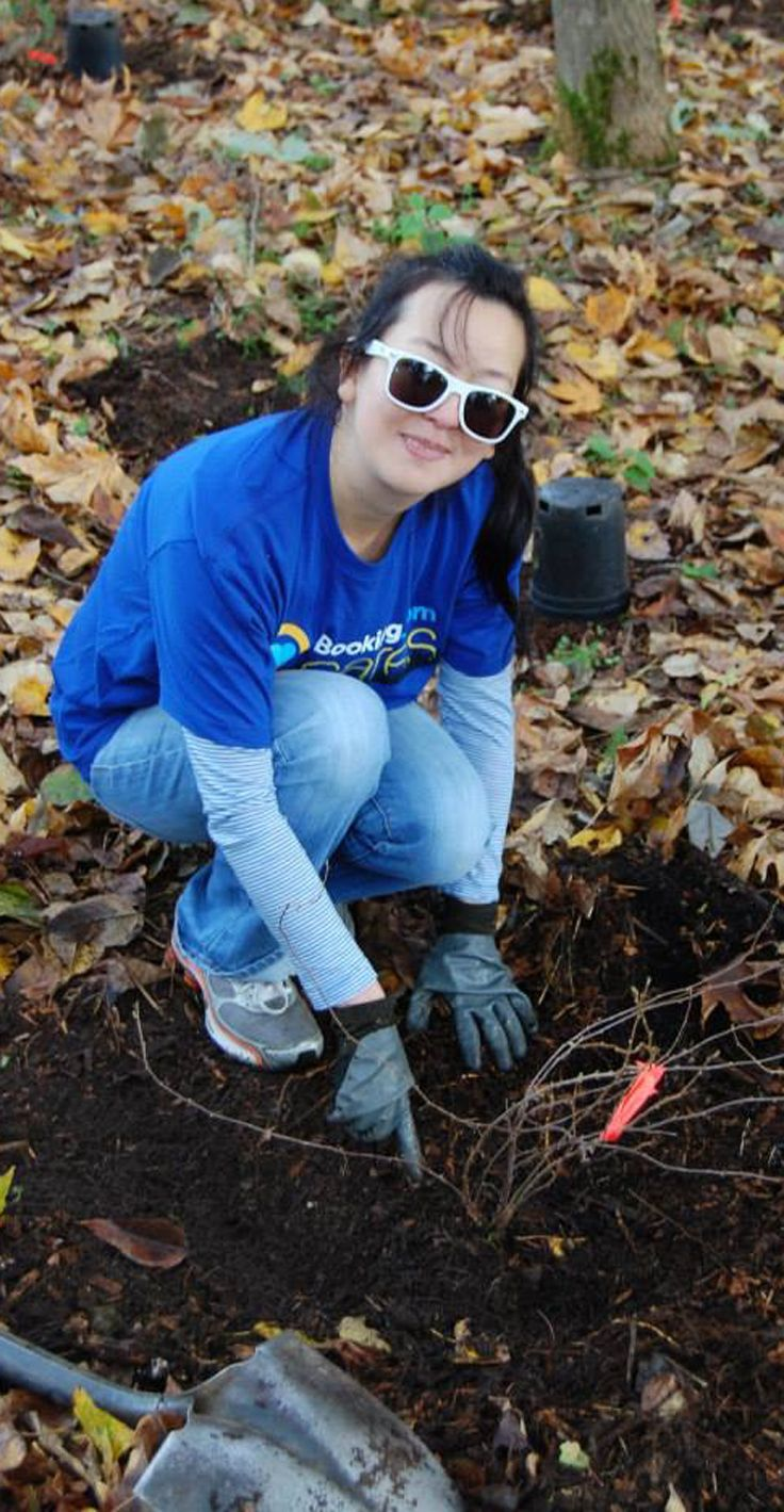 Booking Com Employees And 125 Volunteers Gathered At Everest Park In Washington To Celebrate Arbor Day And Lend A Hand Invasive Plants Arbour Day Ground Cover