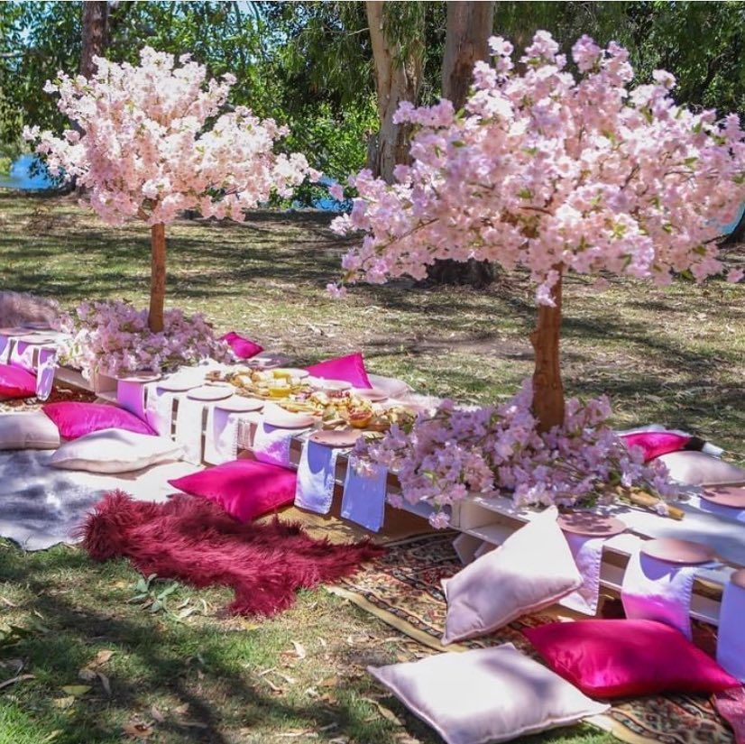 Image May Contain Flower Plant Tree Table Outdoor And Nature Pink Cherry Blossom Tree Cherry Blossom Tree Blossom Trees