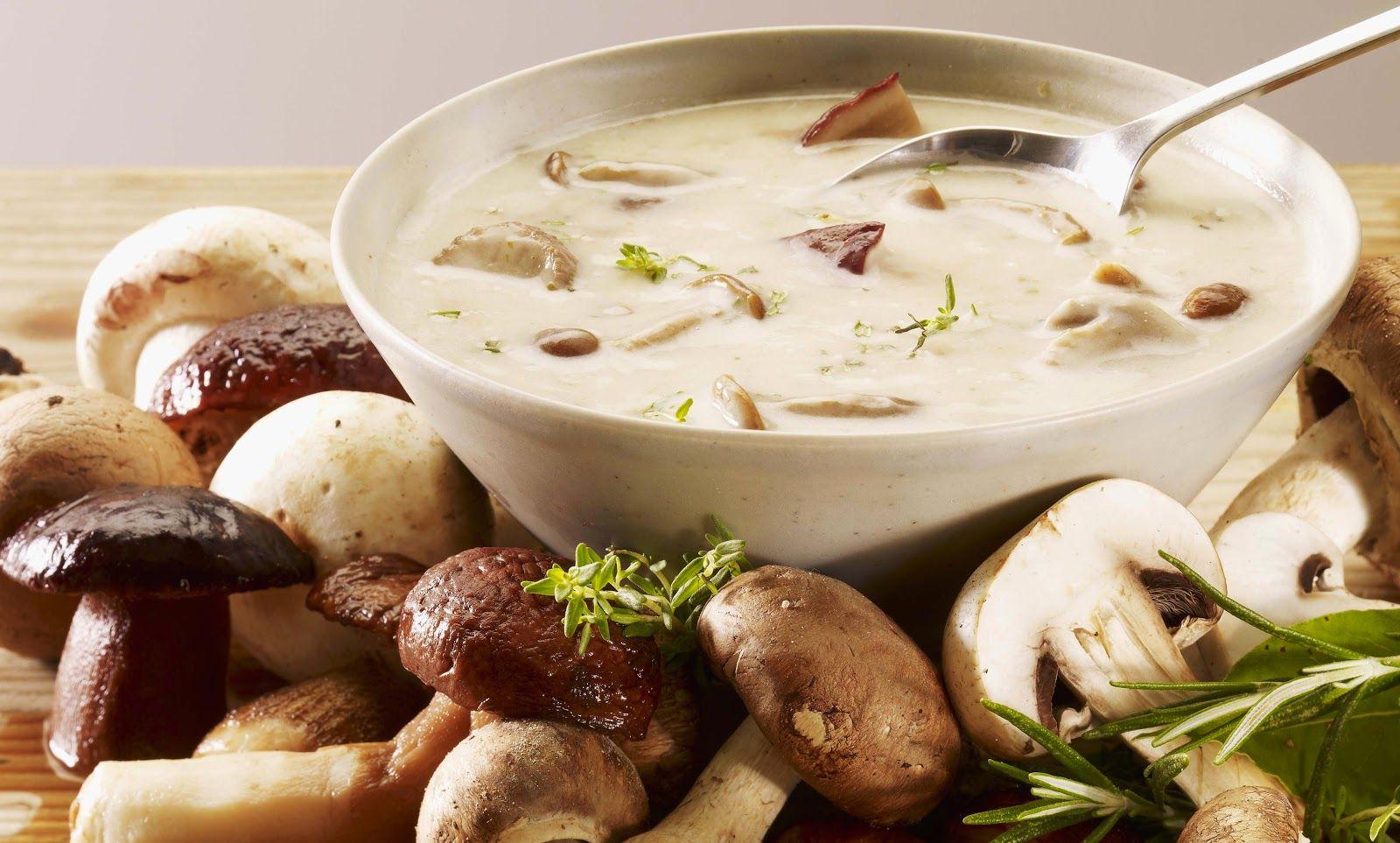 VÌ SAO MẸ NÊN CHỌN NẤM CHO BÉ ĂN??? | Thức ăn, Nấm rơm, Bữa sáng lành mạnh