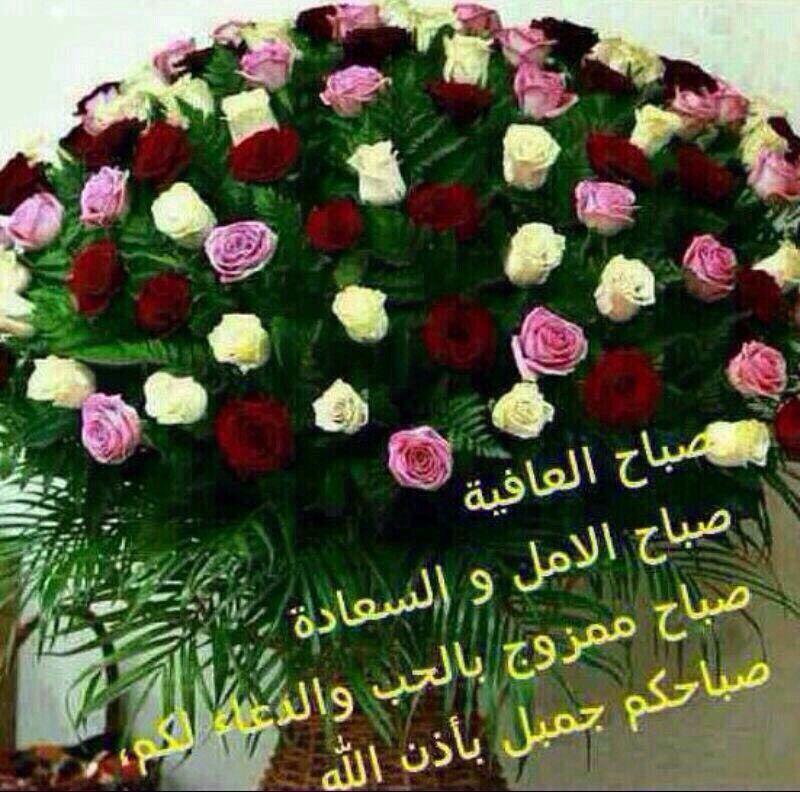 صباحيات صباح الخير صباح الأمل صباح السعادة Christmas Wreaths Floral Wreath Holiday Decor