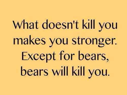 Bears will kill you.