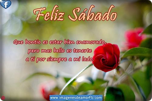 Tarjetas De Feliz Sabado Con Frases De Amor Para Imagenes De Amor