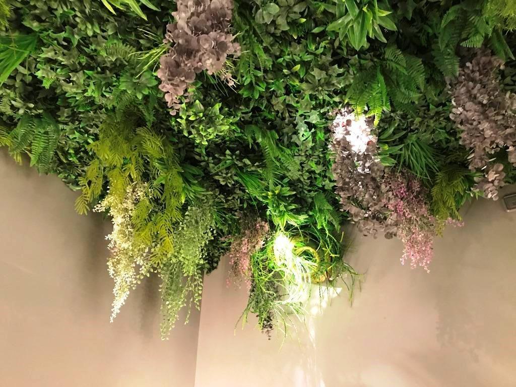 Techo De Plantas Colgantes