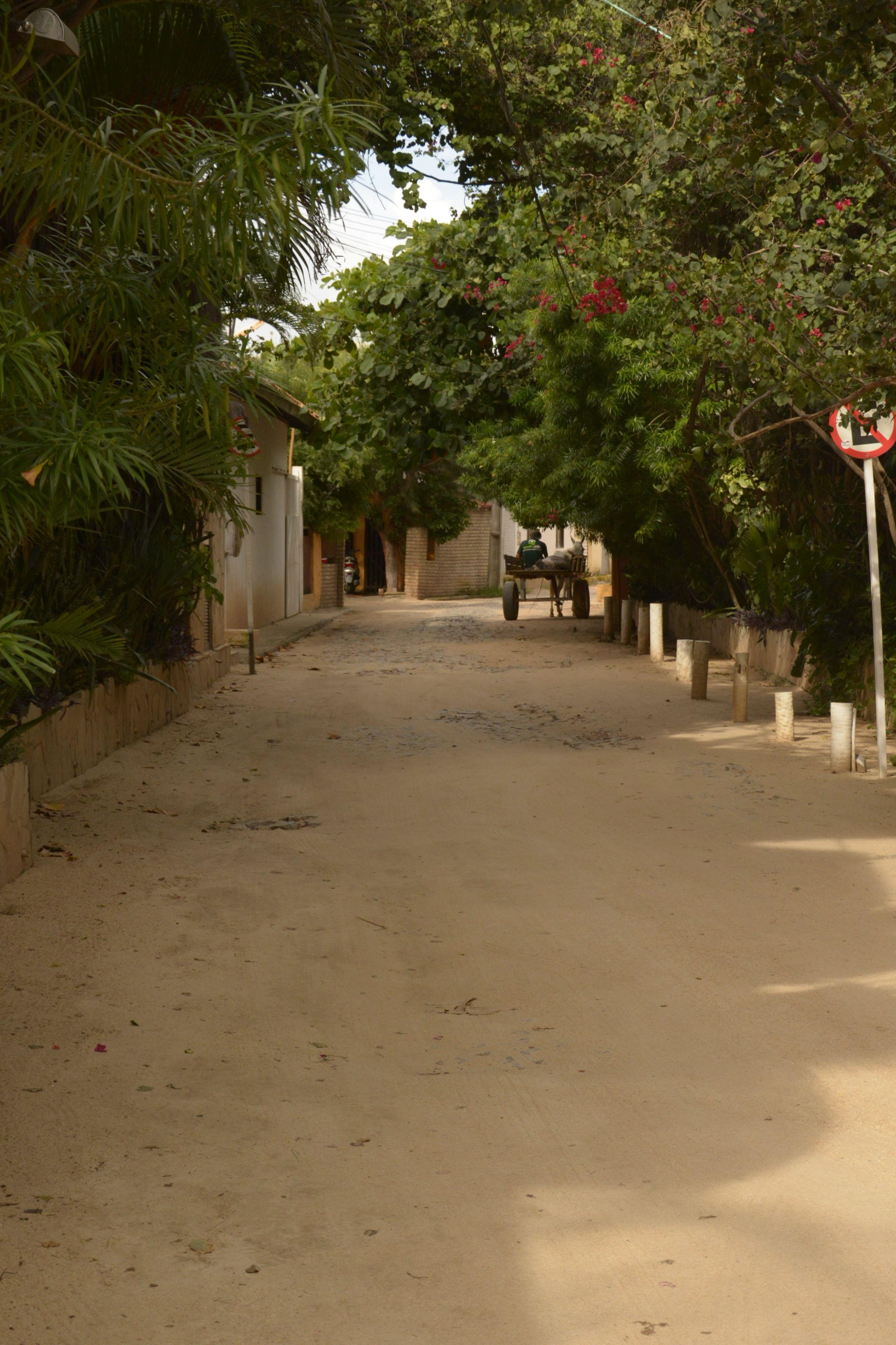 Pacata rua do povoado de Flecheiras