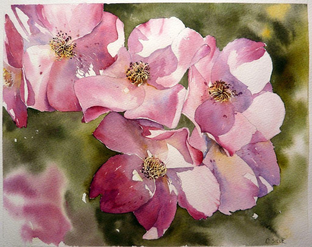 Rosier Aquarelle Art Floral Et Peinture Fleurs
