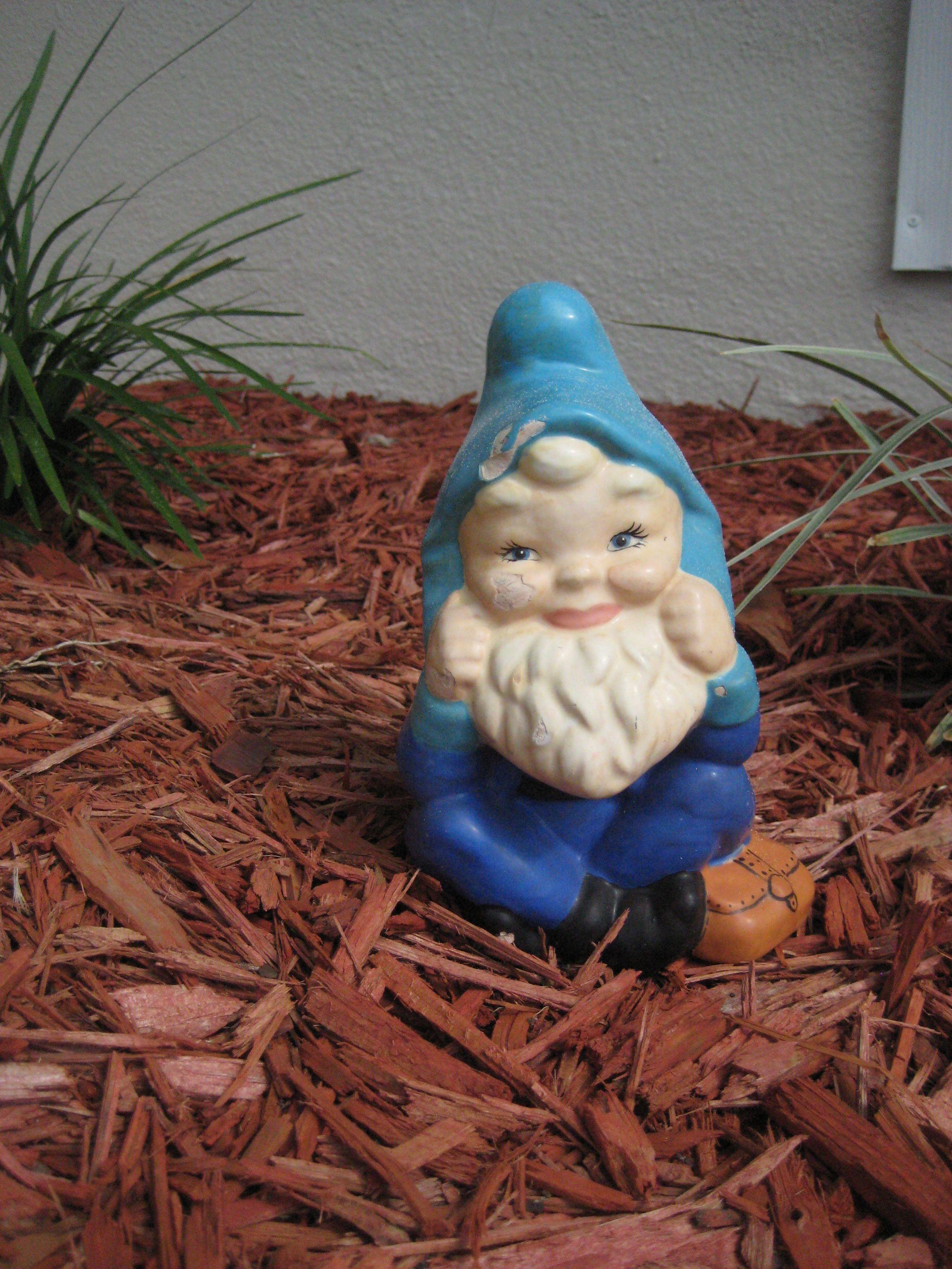 Blue Gnome Home