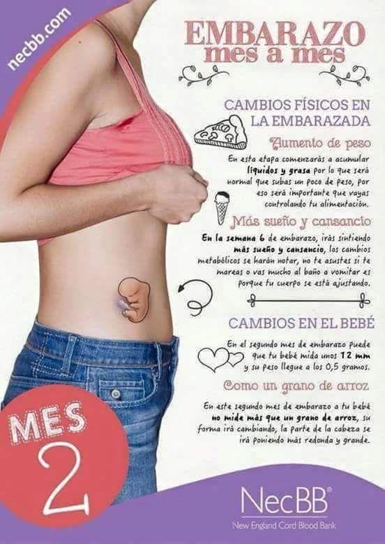 Pin De Dianabel Sj En Embarazo Y Maternidad Embarazo Primer Embarazo Embarazo Saludable