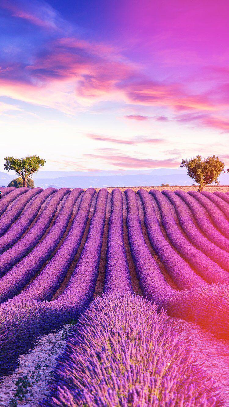 癒し系 おしゃれまとめの人気アイデア Pinterest Katia Jeanne 美しい風景 綺麗な景色 風景写真