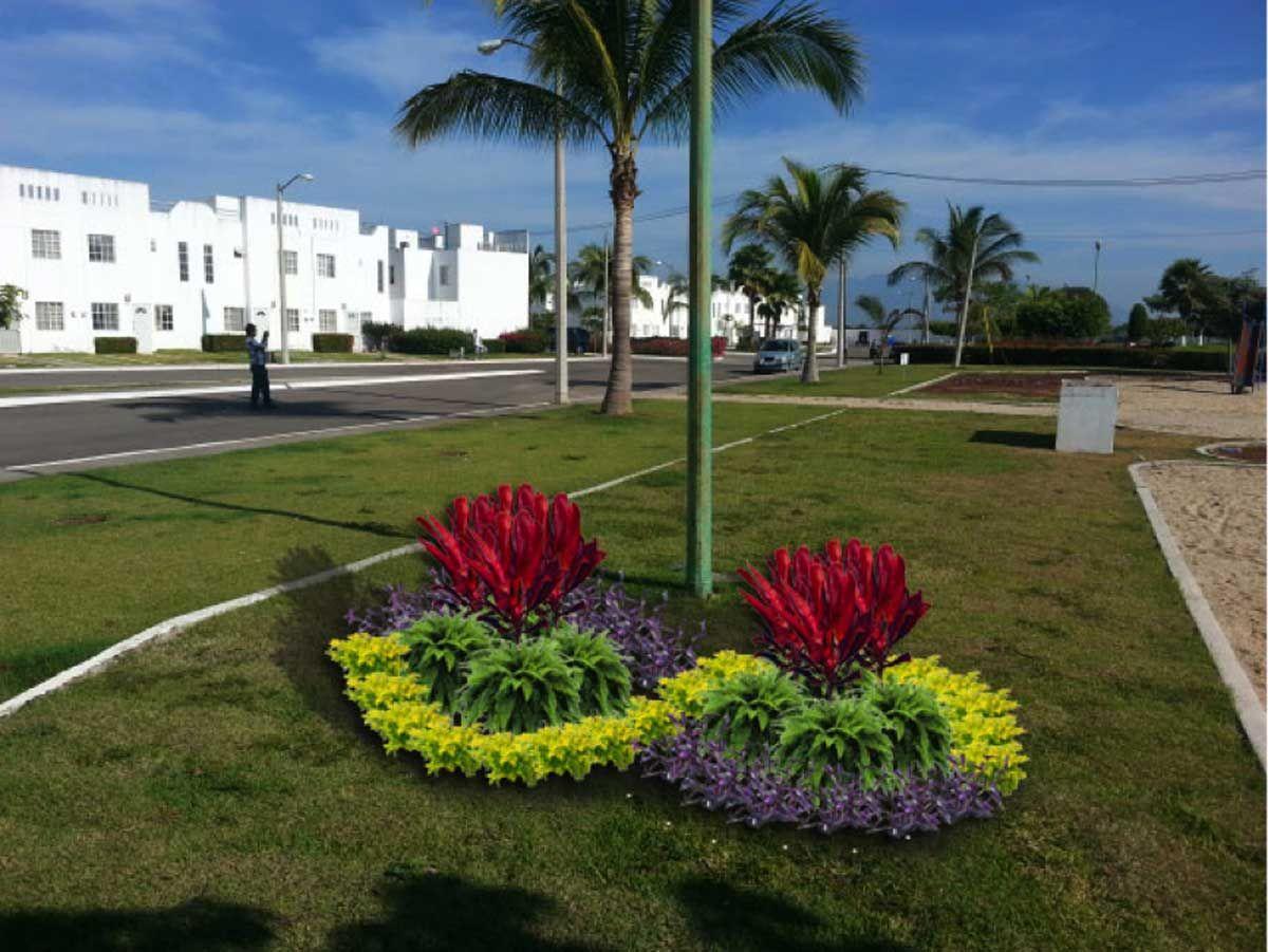 Resultado de imagen para jardines modernos con palmas for Jardines pequenos y modernos